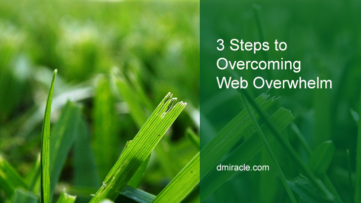 3 Steps to Overcoming Web Overwhelm
