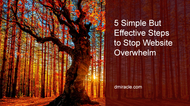 5 Simple But Effective Steps to Stop Website Overwhelm